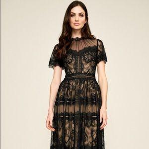 Tadashi Shoji Black Lace Illusion Gown Size 2